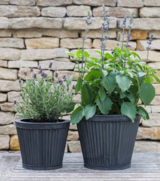 Large Tapered Vence Planter