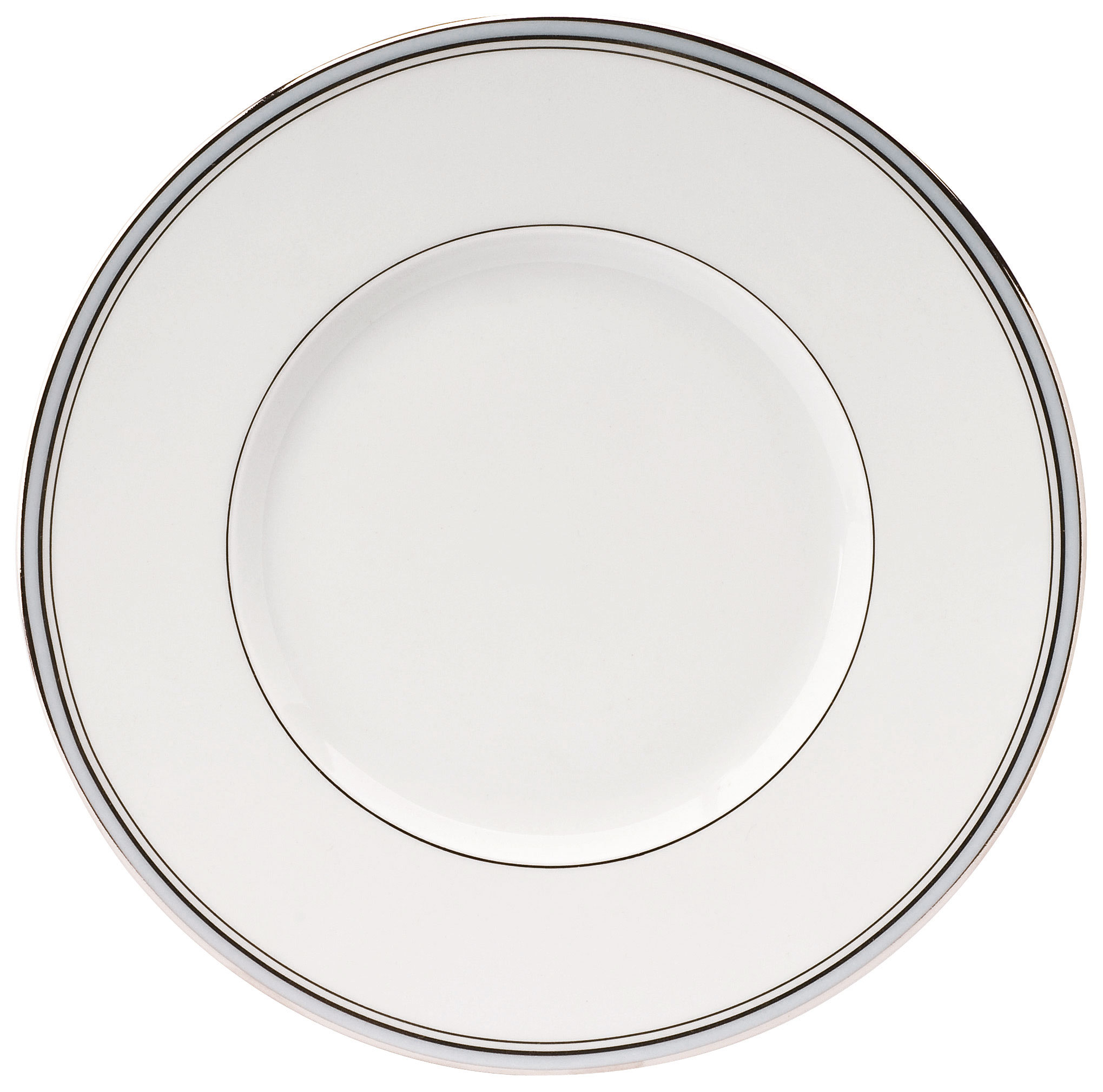 excellence dinner plate powder blue at the perfect present company